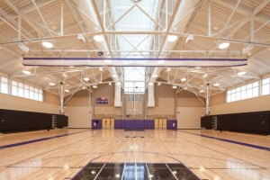 The new gym (2011)